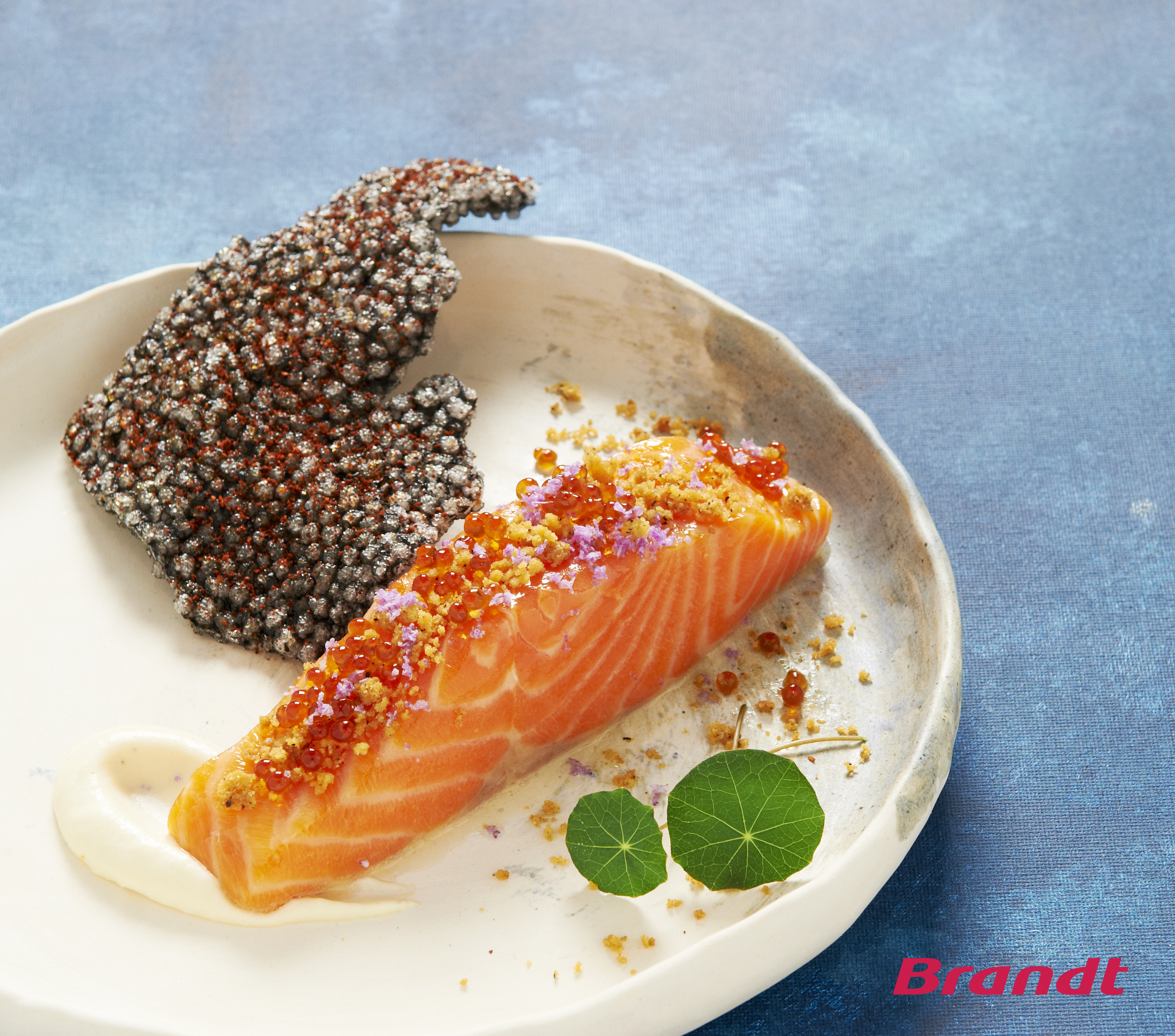 spiced-confit-salmon-trout